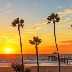Kalifornikation
