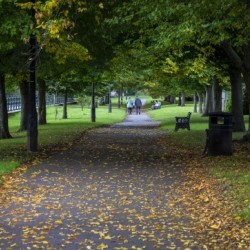 Brecon riverside path