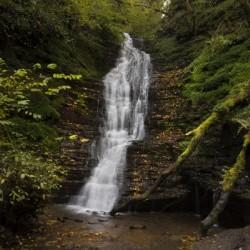 Water-Break-its-Neck landscape