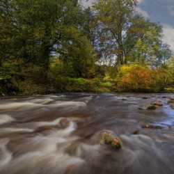 Autumn on the river Tawe