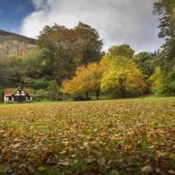 Autumn at Craig-y-Nos Country park
