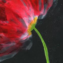 Fantastical Flower