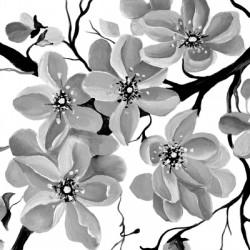 Sakura black and white