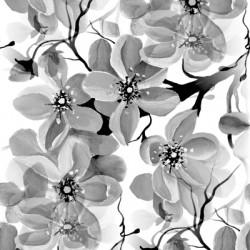 Sakura black and white 1a