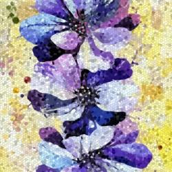 delphinium Mauve mosaic