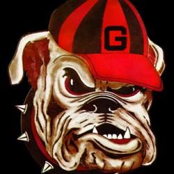 1966 Vintage Georgia Bulldog Art