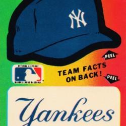 1982 Fleer Decal New York Yankees Wall Art