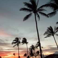 Maui Twilight