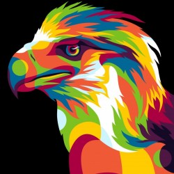 Philippine Eagle Illustration