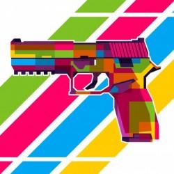 SIG P250 Handgun