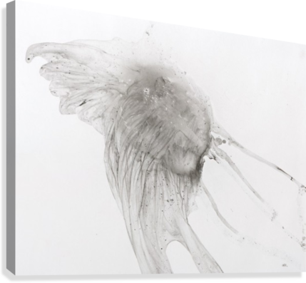Jellyfish against a white background  Canvas Print
