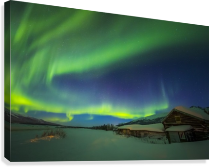 The aurora fills the sky above the historic Black Rapids Roadhouse along the Richardson Highway on a bitterly cold night; Alaska, United States of America  Canvas Print
