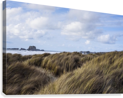 Grass and clouds frame a scene along the coast; Bandon, Oregon, United States of America  Canvas Print