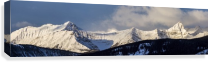 Panorama of snow covered mountains with early morning light, silhouetted forest in the foreground, blue sky and clouds; Kananaskis Country, Alberta, Canada  Canvas Print