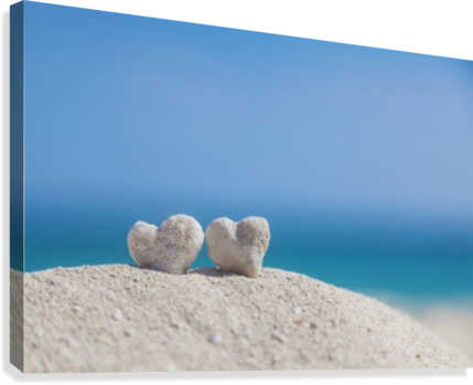 Two white heart shaped coral rocks placed together on sand at the beach; Honolulu, Oahu, Hawaii, United States of America  Canvas Print