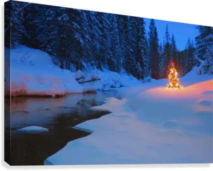 Glowing Christmas Tree By Mountain Stream  Canvas Print