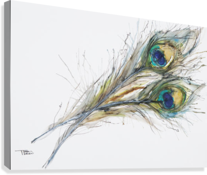 Watercolor Painting Of Two Peacock Feathers.  Canvas Print