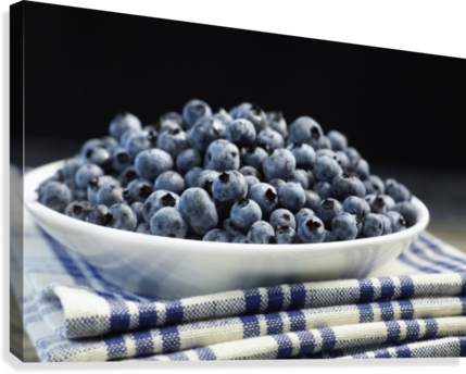 Bowl of blueberries; Quebec, Canada  Canvas Print