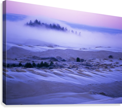 Fog over the sand dunes at dawn after a heavy frost; Lakeside, Oregon, United States of America Canvas print