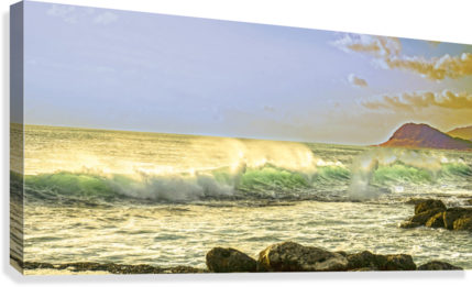 Spring Surge After the Storm Panorama  Canvas Print