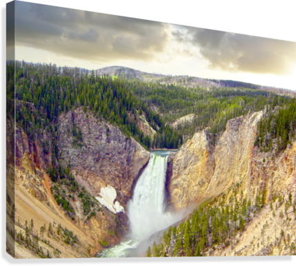 Mighty Yellowstone - Grand Canyon of the Yellowstone River - Yellowstone National Park  Canvas Print