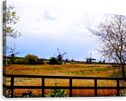 Windmills in Spring  Canvas Print
