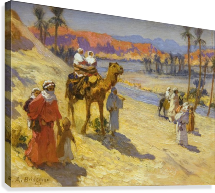 A walk through the dessert  Canvas Print