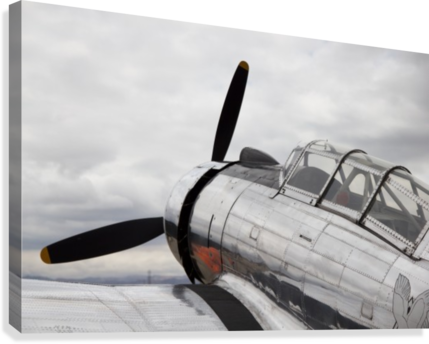P-53 Nose  Canvas Print