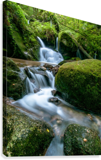 Small Waterfall in the German Black Forest  Canvas Print