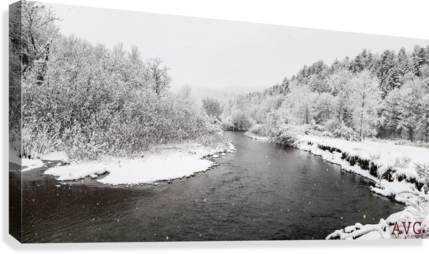 Dog River-- Winter  Canvas Print