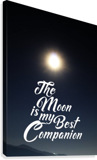 THE MOON IS BEST COMPANION ARTISTIC PARADIGMS  Canvas Print