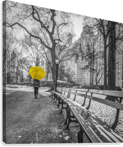 Tourist on pathway with Yellow umbrella at Central park, New York  Canvas Print