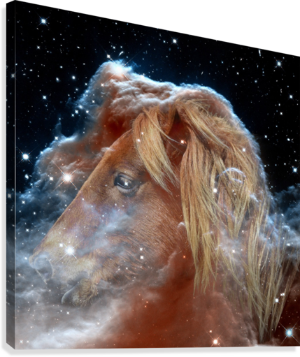 Horsehead Nebula with Horse Head in Space  Canvas Print