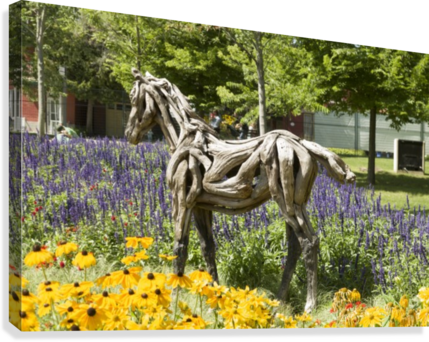 Odyssey the horse and Hope the Colt sculptures made of driftwood by Heather Jansch. 2  Canvas Print