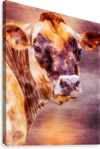 Beautiful Dairy Cow  Canvas Print