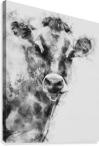 Dairy Cow Black and White  Canvas Print