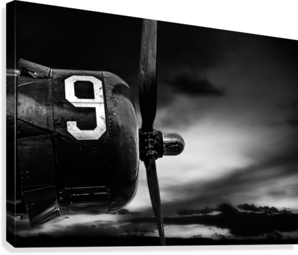 Number 9 Consolidated B24  Canvas Print