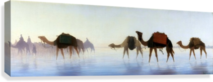 Camels crossing water  Canvas Print