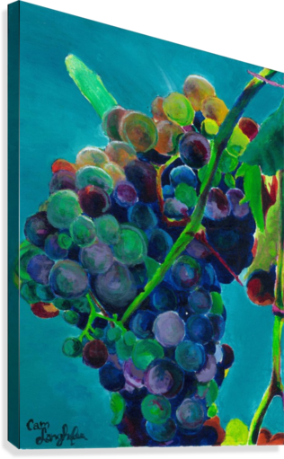 GRAPES CAMERON JARED LANGHOFER  Impression sur toile