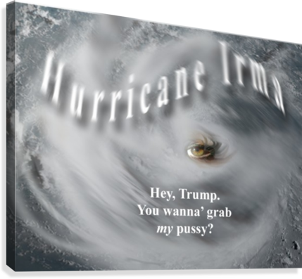 HurricaneIrma  Canvas Print