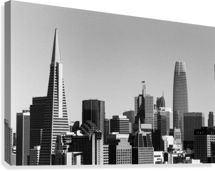 Black and White San Francisco Skyline  Canvas Print