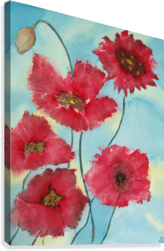 POPPIES DONNA STARES   Canvas Print
