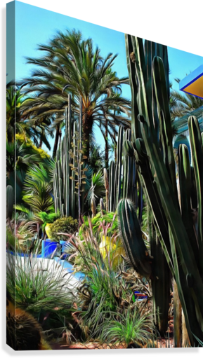 GIANT CACTI JARDIN MAJORELLE MARRAKECH DOROTHY BERRY-LOUND  Canvas Print