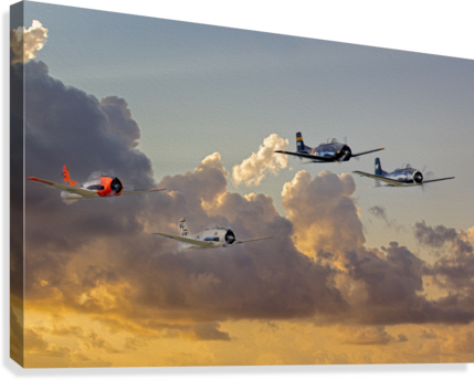 Four T 28 Trainers  Canvas Print