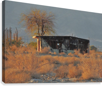 Abandoned in the Desert  Canvas Print