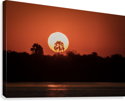 Sunset of Zimbabwe  Canvas Print