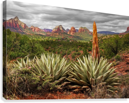 Storm over Sedona  Canvas Print
