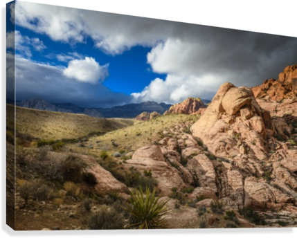 RED ROCK CANYON LUIS BONETTI  Canvas Print