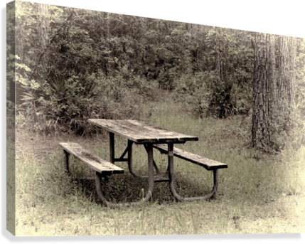 A_Lonely_Table  Canvas Print