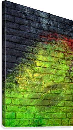 The Green Wall  Canvas Print